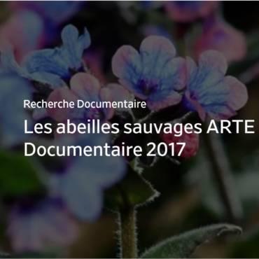 Les abeilles sauvages ARTE Documentaire 2017