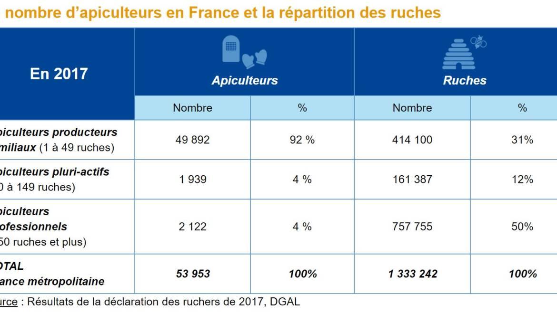 ADA France L'apiculture professionnelle en chiffres