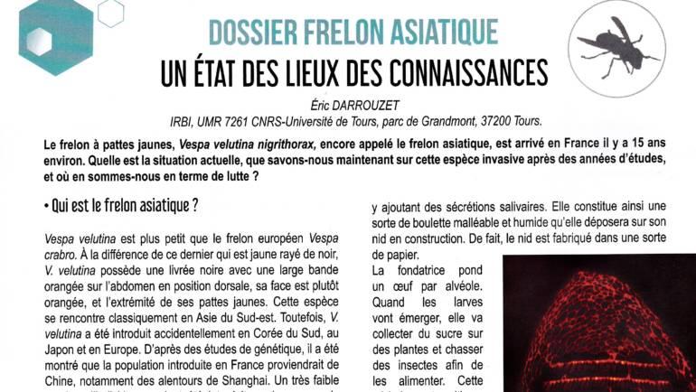 Article l'AdF N°1065 février 2019 Dossier Frelon Asiatique